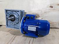 Червячный мотор-редуктор NMRV-75-25 с электродвигателем 0,75 квт 220/380в, фото 1