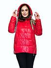 Яскрава Зимова Куртка Фабричний Пуховик Jarius Розміри в наявності 42-48 (S-XL), фото 7