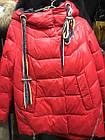 Яскрава Зимова Куртка Фабричний Пуховик Jarius Розміри в наявності 42-48 (S-XL), фото 3