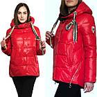 Яскрава Зимова Куртка Фабричний Пуховик Jarius Розміри в наявності 42-48 (S-XL), фото 8