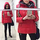 Яскрава Зимова Куртка Фабричний Пуховик Jarius Розміри в наявності 42-48 (S-XL), фото 4