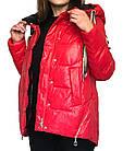 Яскрава Зимова Куртка Фабричний Пуховик Jarius Розміри в наявності 42-48 (S-XL), фото 2