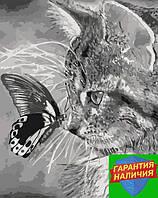 Картина по номерам Котёнок и бабочка Кошеня і метелик 40*50см KHO2499 Розпис по номерах