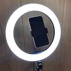 Кольцевая лампа 30 см со штативом 2м лампа для селфи лампа для тик тока, фото 3