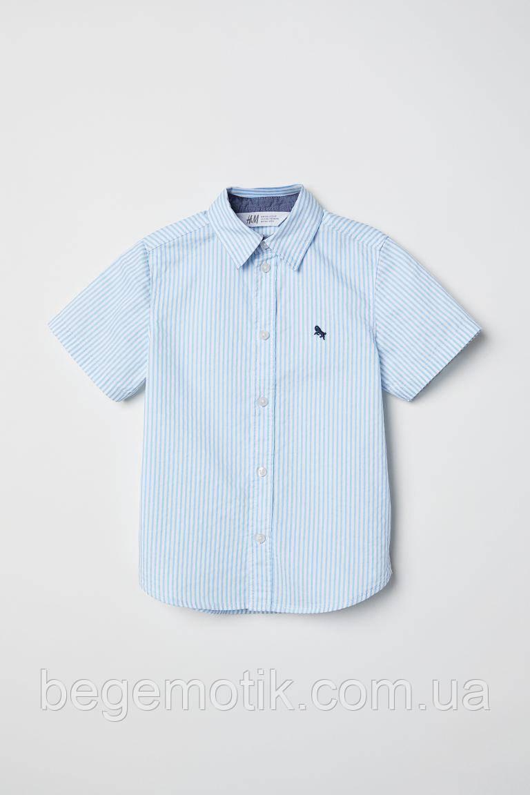 H&M Хлопковая рубашка для мальчика Голубой/Белая полоска 6-7 лет рост 116-122