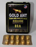 Препарат для потенции Gold Ant - Золотой Муравей