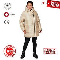 Женская Куртка демисезонная 54-68 прямой силуэт Бежевый