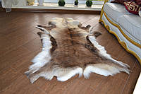 Шкура оленя, фото 1