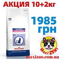 10+2 АКЦІЯ Роял Канин Янг Фимэйл Royal Canin Young Female сухой корм для стерилизованных кошек 10+2кг