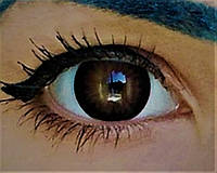 Темно карие линзы. Черно карие линзы для глаз. Карие цветные линзы. Цветные линзы для глаз.