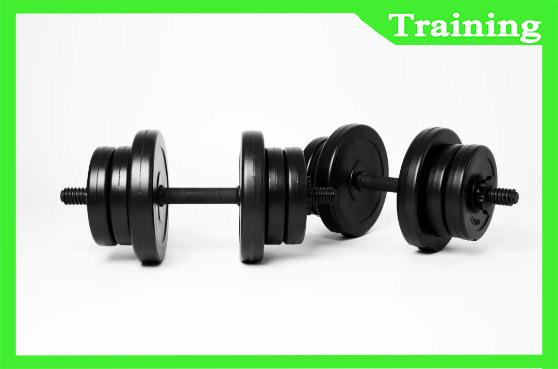 Гантели разборная 2х10 кг CHALLENGER-SPORT