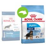 Сухой корм Royal Canin (Роял Канин) MAXI PUPPY для щенков крупных пород до 15 месяцев на развес, 1 кг