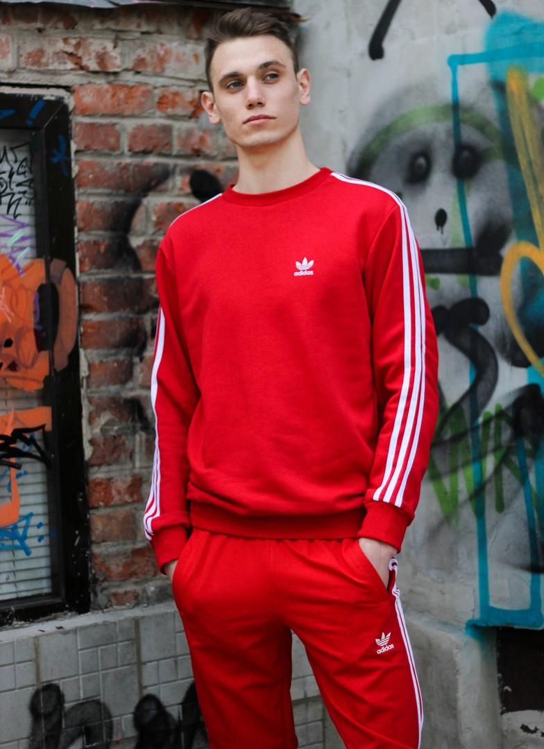 Мужской красный спортивный костюм Adidas