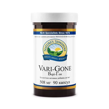 Vari - Gone Вэри - Гон, НСП, NSP, США Профилактика варикоза, фото 2