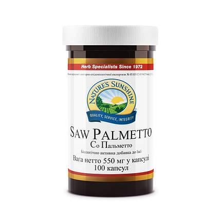 Saw Palmetto Со Пальметто, NSP, НСП, США Здоровье предстательной железы, фото 2