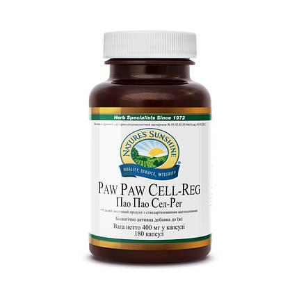 Paw Paw Cell - Reg Пао Пао, NSP, НСП, США Онкопротектор, содержит эстракт ацетогенинов (Acetogenin), фото 2