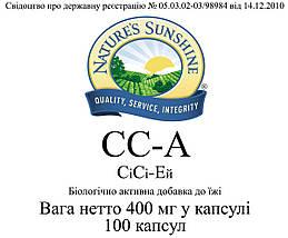 CC-A Си Си-Эй, NSP, НСП, США Для повышения иммунитета, болеутоляющее, антиоксидант, растительный антибиотик, фото 3