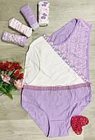 Жіночі трусики тижні бавовна Nicoletta Туреччина 7шт. розмір 4XL (52-54) 724045