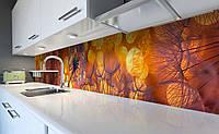 Кухонный фартук Одуванчики на Закате (виниловая наклейка для кухни ПВХ пленка скинали) блики свет Оранжевый