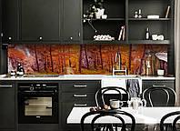 Кухонный фартук Осенний Лес 3Д (виниловая наклейка для кухни ПВХ пленка скинали) деревья Природа Оранжевый 600*2500 мм