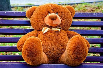 Плюшевий ведмедик Пух 80 см Коричневий