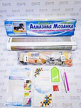 DM-105 Набор алмазной живописи Милые панды, фото 3