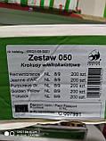Крокус крупноцветковый маточник пурпурный луковица Crocus Purpureus Grandiflorus на выгонку 1 шт 8/9 Голландия, фото 2