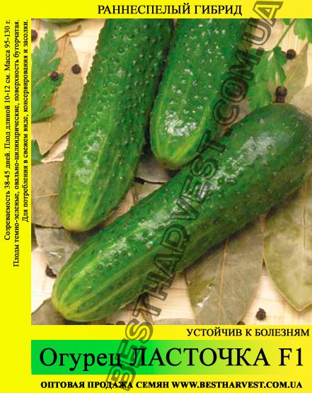 Семена огурца Ласточка F1 0,5 кг