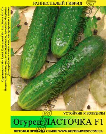 Семена огурца Ласточка F1 0,5 кг, фото 2