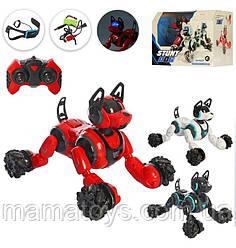 Собака 666-800A Робот на Радиоуправлении с Браслетом  Размер 31 см, звук, свет, Аккумулятор, зарядное 3 цвета,