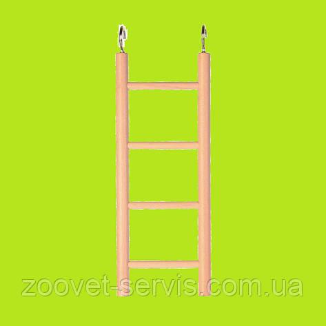 Лестница для попугая TRIXIE Размер: 20см, фото 2