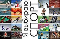 Спорт в нашей жизни