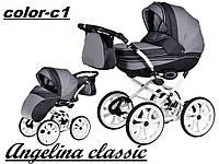 Коляска 2 в 1 Angelina Classic color c1 (Ангелина Классик)