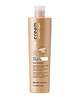 Шампунь с аргановым маслом для окрашенных волос Inebrya Ice Cream Pro Age Shampoo Argan oil