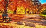 Осеннее настроение.