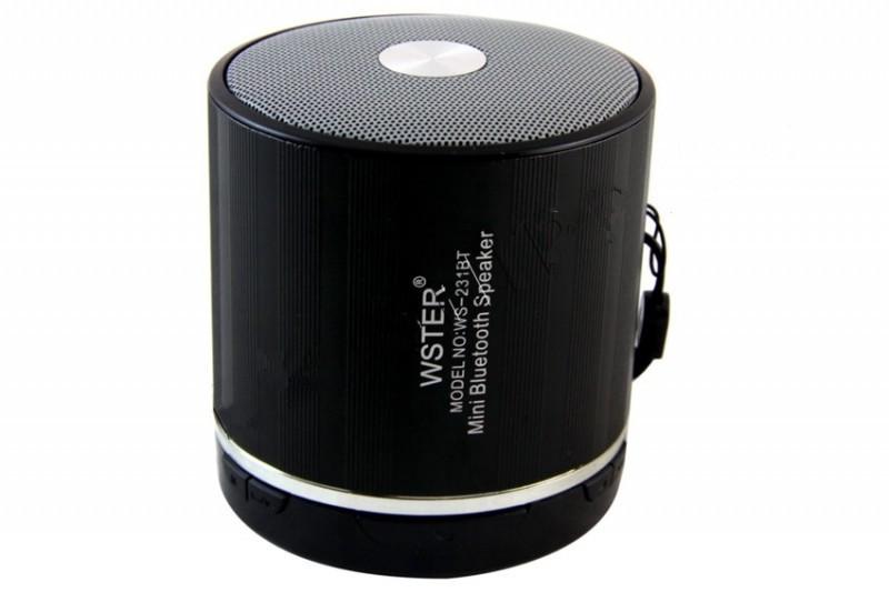 Bluetooth колонка WSTER WS-231