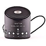 Портативна колонка FM USB Wster WS A9, фото 2
