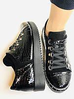 Зручні жіночі осінні туфлі. Натуральна лакована шкіра. Mamamia. Туреччина. 36-40 Vellena, фото 10