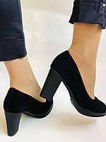 Женские модельные туфли-лодочки высокого качества.Polann. Натуральная замша. Супер комфорт. 35 39 40, фото 7