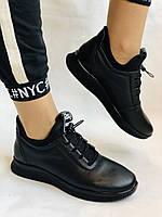 24pfm. Туфли- кроссовки женские. Натуральная кожа. На широкую ногу .36, 38, 39, 40 Vellena, фото 5