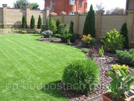Ландшафтний дизайн: газон