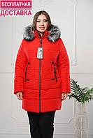 Бесплатная доставка женской куртки по Украине.