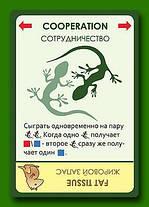 Настольная игра Эволюция, фото 3