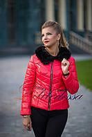 Куртка зимняя короткая красный