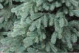 """Ялинка штучна Лита """"Альпійська"""" блакитна 1,5 м, фото 2"""
