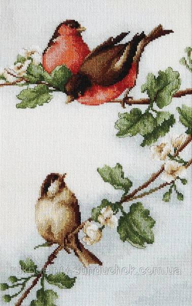 """Набор для вышивания крестом """"Luca-s""""  B216 Птички"""
