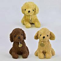 "Мягкая игрушка ""Собачка"" С 22815 (96) 3 цвета, 27см"