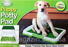 Туалет для собак и кошек Puppy Potty Pad, фото 2