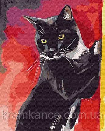 """Картина по номерам """"Мистер Кот"""" GX32337,, фото 2"""