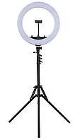 Кольцевая светодиодная лампа 45см (55Вт) со штативом2 метра HQ 18